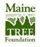 Maine Tree Foundation